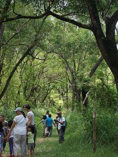 la mesa nature reserve, Quezon City