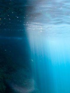 Infinite beauty lies under the sea...