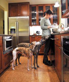 Kitchen Tour: Food Writer Ivy Manning's Portland Kitchen
