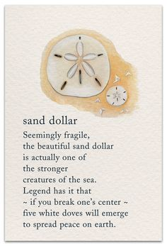 Inside message: Wishing you the sand dollar's strength, peace & beauty today. Words Quotes, Wise Words, Me Quotes, Motivational Quotes, Inspirational Quotes, Sayings, Tarot, Spiritual Symbols, Peace Symbols