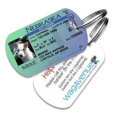 Nebraska Driver's License Pet Tag #dogtags #dogaccessories #dogfashion #doglover #doggift #dogs #puppy #pettag #driverslicense #petlicense #dognametag #doglicense #dogdriverslicense #nebraska #nebraskalicense
