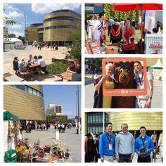 Sunshine Pimms and a beaver - a very hot first Summer Graduation week #graduation #tugrad #teessideuniversity #uni #classof2016