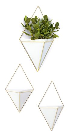 Whatever will you put inside this Pyramid Wall Vessel? http://dotandbo.com/collections/dreaming-of-mid-century?utm_source=pinterest&utm_medium=organic&db_sku=105842
