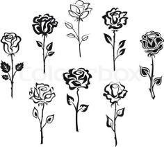 Vector of 'Set of rose flowers' More