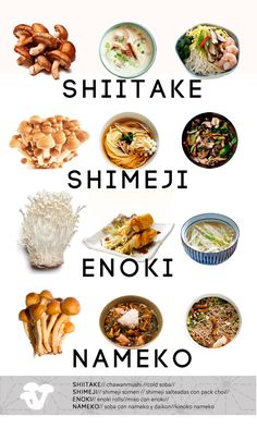 Japanese cuisine for beginners. Japanese mushroom varieties