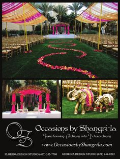 My Maharani Wedding ....this would definitely be a day to remember bcoz of the lovely outdoor setting , rose petals , casual atmosphere ......my dream wedding ♥
