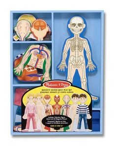 Melissa & Doug Magnetic Human Body Anatomy Play Set (Anatomically Correct Boy and Girl Magnets, 24 Magnetic Pieces and Storage Tray, Great Gift for Girls and Boys - Best for 5 Year Olds and Up) Human Body Activities, Science Activities, Preschool Science, Elementary Science, Elementary Schools, Body Preschool, Montessori Science, Montessori Homeschool, Science Toys