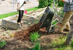 Dean Thomas Tree Landscape Service And Services In Pittsburgh Pa