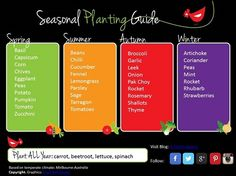 Planting Guide Pretty, but would use a lot of ink to print. Make a desktop instead? (Seasonal Vegetable Planting Guide - Printable)Pretty, but would use a lot of ink to print. Make a desktop instead? Vegetable Chart, Vegetable Planting Guide, Starting A Vegetable Garden, Veg Garden, Edible Garden, Veggie Gardens, Garden Art, When To Plant Vegetables, Planting Vegetables