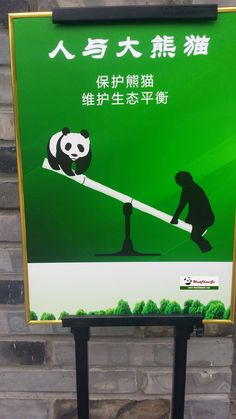 196 Best Chengdu Research Base of Giant Panda Breeding
