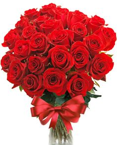 Pour Elise Beautiful Flowers Pictures, Flower Pictures, Beautiful Roses, Pretty Flowers, Tulip Bouquet Wedding, Birthday Blast, Apple Roses, Rose Images, Special Flowers