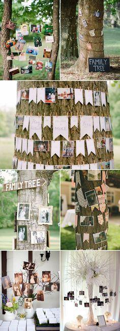Family Tree photo display wedding decor / http://www.himisspuff.com/ideas-to-display-wedding-photos/