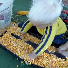 Corn Sensory Activity for Toddlers 18 Month Old Activities, Sensory Activities Toddlers, Halloween Activities For Kids, Sensory Bins, Sensory Play, Toddler Preschool, Fun Activities, Tot School, Kids Hands