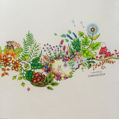 Coloring #JohannaBasford #EnchantedForest #coloringbook using #Muji color pencils