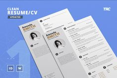 Infographic Resume Vol 1   Word  Indesign and Photoshop Template     Infographic Resume Vol 1   Word  Indesign and Photoshop Template    Professional and Creative Cv Resume Design   Instant Digital Download    Pinterest