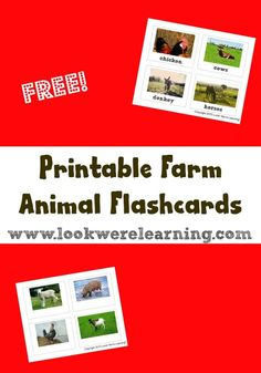 We're continuing our study of farms with printable farm animal flashcards! Get your set!