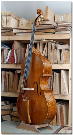 """Arnold Schnitzer, New York. 2013, #33. 7/8 modified Testore (orchestral) model. Flat back and ribs of 40 year old quilted Big Leaf maple; Top of Engelmann spruce; German maple scroll (pre-carved). 41 1/4"""" (104.8 cm.) string length."""