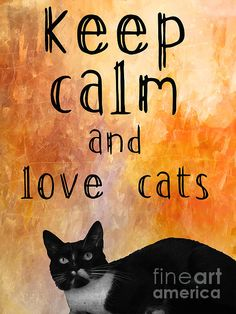 Keep Calm And Love Cats by Justyna Jaszke