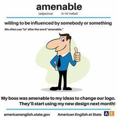 Are you amenable to change? #AmericanEnglish #vocabulary