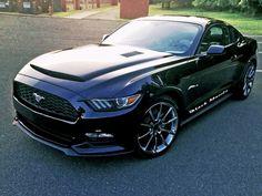 Ford Mustang Black Mamba Ram Air Hood 2015 2016