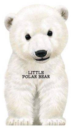 My daughter love animals and these Preschool Polar Bear Activities are a great way to make those drab winter days fun