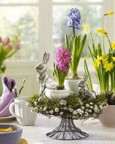 DIY Easter Decorations ideas are amazing. Get best Easter decor ideas & easy Easter decorating tips here, including Easter decorations for home & Easter DIY Easter Flower Arrangements, Easter Flowers, Spring Flowers, Spring Blooms, Easter Table Decorations, Decoration Table, Easter Centerpiece, Table Centerpieces, Spring Decorations