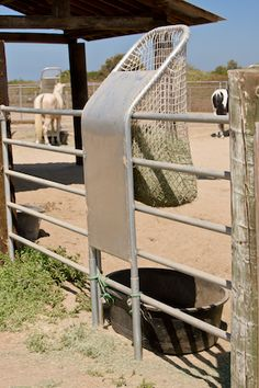 slow feeder mounted on pipe rail fence Paddock Trail, Horse Paddock, Horse Hay, Horse Slow Feeder, Hay Feeder For Horses, Horse Pens, Horse Barn Designs, Horse Shelter, Horse Ranch