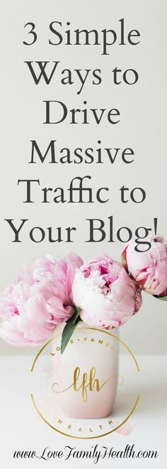 3 Simple Ways To Drive Massive Traffic To Your Blo Wordpress For Beginners, Blogging For Beginners, Make Money Blogging, How To Make Money, Blogging Ideas, Money Tips, Saving Money, Nuno, Tips & Tricks