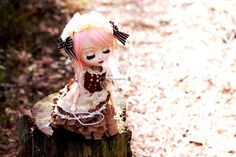 Spring dreaming | by Siniirr Wigs, Kitty, Princess Zelda, Moon, Dolls, Spring, Fictional Characters, Art, Little Kitty