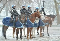 The horse in front is named Easy. I donated him to the park police. News Photo: Mounted US Park Police patrol Lafayette Park during…