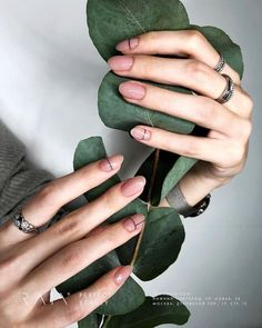 spring nails 2019, spring nails 2019 gel, spring nails 2019 dip, spring nails 20... - Easy DIY / Home Decor - #Decor #dip #DIY #Easy #Gel #Home #Nails #Spring