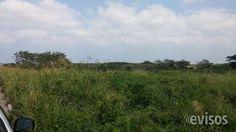 hectareas en el km 13.5  tenemos las hectareas que ud quiera en el km 13.5  solo uso industrial y en cualquier parte de ...  http://veracruz-city.evisos.com.mx/hectareas-en-el-km-13-5-id-600741