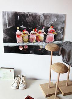 affiche birds0