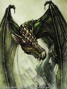 The Green Dragon by Wardem on DeviantArt