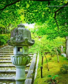 #shinryoku #eikando #zenrinji #temple #higashiyama #kyoto #japan #sonyrx1r #sonyimages #japanimpressions bit.ly/29VdHOf