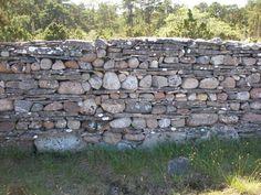 Stone fence on Fårö, Gotland.