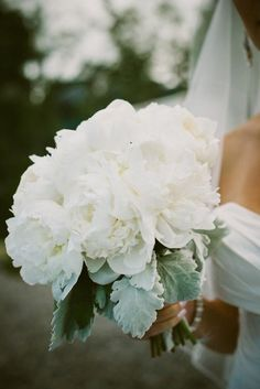 Peony and dusty miller bouquet