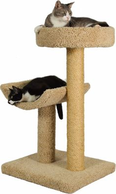 """Molly and Friends """"Simple Sleeper"""" Premium Handmade Cat Tree with Sisal, Model Beige, Colors May Vary : Cat Condo For Large Cats Wooden Cat Tree, Diy Cat Tree, Cool Cat Trees, Cool Cats, Cat Tree Plans, Cat Tree House, Gato Gif, Cat Activity, Cat Perch"""