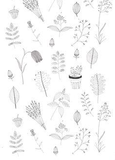 Illustration by Ryn Frank www.rynfrank.co.uk