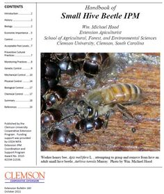 Small Hive Beetle IPM...everything you can know about the SHB (Oct 2011)