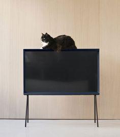Телевизор от братьев Буруллеков
