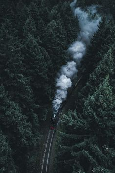 Beautiful Moody Travel Landscapes by Luca Daniel // long distance train ride like in the lion the witch and the wardrobe series to narnia Dark Green Aesthetic, Nature Aesthetic, Natur Wallpaper, Images Harry Potter, Slytherin Aesthetic, Harry Potter Wallpaper, Hogwarts Houses, Harry Potter Houses, New Wall