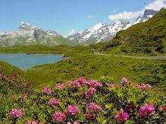 Lucerne Tourism: Best of Lucerne, Switzerland - TripAdvisor