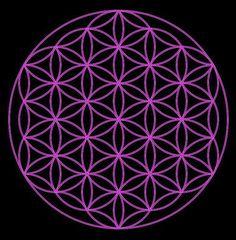 Geometria sta la baza crearii Universului, aceasta regasindu-se peste tot, de la firicelul de nisip, la oameni, animale, peste tot in natura, pana la plane