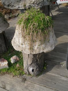 Cement Mushroom planter  Saw this in Berlin,Oh