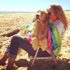 Beach dog, beach, dog, Golden Retriever, Gordon Setter, Golden Retriever Puppy, Golden Retriever Dog, Dog, Puppy, happy dog, playing dogs, adventure, wanderlust, explore, man's best friend, coastline, beach adventure, goldens