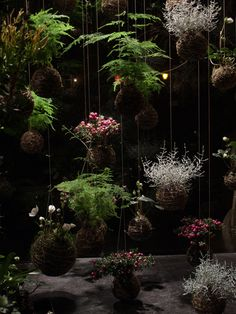 I saw/read about string gardens in a magazine. This is cool. DIY Inspo: Japanese string gardens.