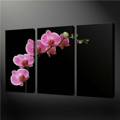 Amazon.com - 3 Piece Wall Art Painting Print On Canvas The Picture Black White And Red Pink Orchids Flowers Pictures For Home Modern Decoration Oil -