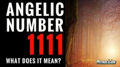 The Meaning of Angelic Number 1111 Number 1111, Leadership Personality, Numerology Calculation, Life Path Number, Numerology Numbers, Angel Numbers, What Is Your Name, Meaning Of Life, Mbti