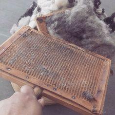 👐🏽🐏💛En YE' ii elaboramos tapetes artesanales de lana 100%. Esta foto corresponde al proceso de cardado de la lana con peines cubiertos de púas para quitarle residuos a la lana y paralelizar las fibras previo al hilado. Nuestros procesos son tradicionales, apoya lo hecho en México…